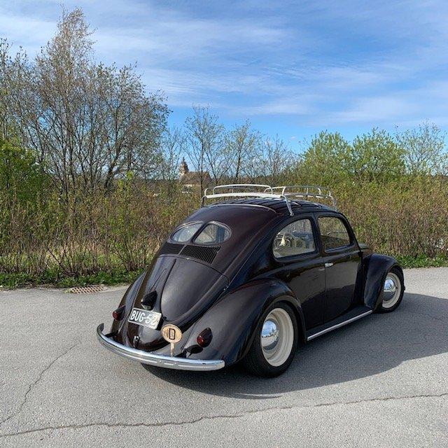 bug52 b.jpg