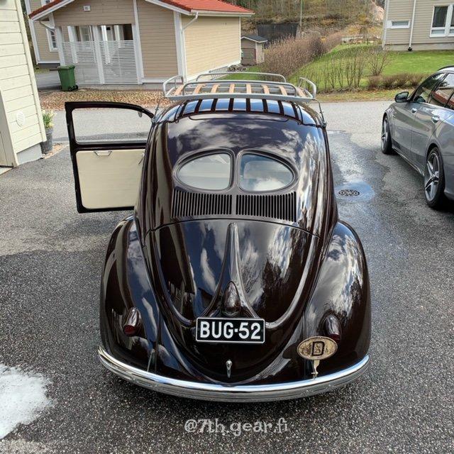 bug52 a.JPG