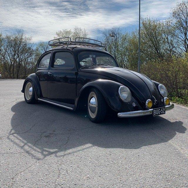 bug52 c.jpg